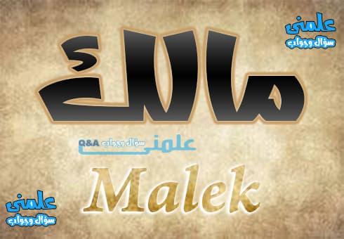 معنى اسم مالك Malik