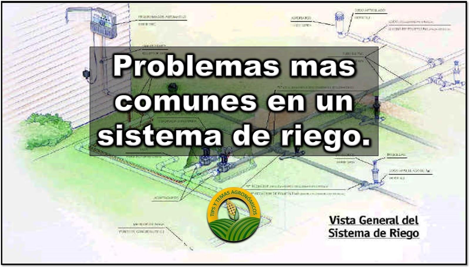 Problemas mas comunes en un sistema de riego for Instalacion riego jardin