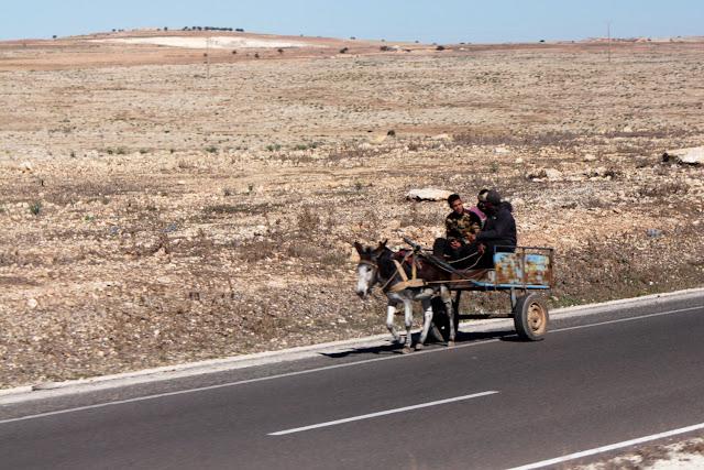 Carro tirado por burro visto desde el bus