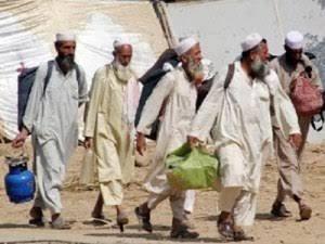 Ijtima Jamaah Tabligh Dinilai tak Sejalan dengan Kaidah Islam