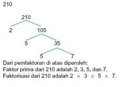 Faktor 210