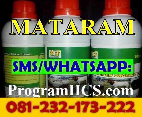 Jual SOC HCS Mataram