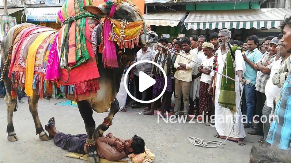 """""""காசுக்காக என்னவெல்லாம் செய்ய வேண்டியது இருக்கு !! ஆபத்தான வித்தை !!"""