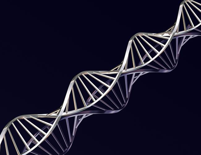 كيف يتم استنساخ الحمض النووي لملايين النسخ!