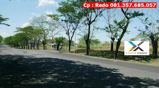Jual Tanah Murah Citraland Surabaya, Level Tanah Tinggi, Lokasi Strategis, CP 081.357.685.057