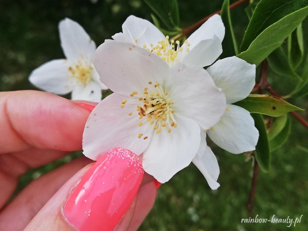 manicure-candy-effect-vitamin-c