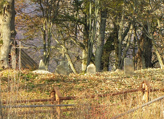 Kilkanaście zachowanych nagrobków na przycerkiewnym cmentarzu.