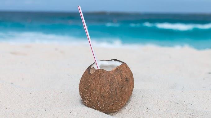 Sandy - Grenada | Free Music