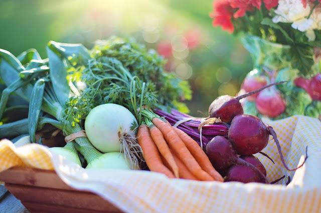 agriculture basket beets