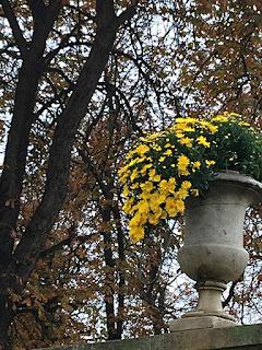 Planter pot déco in Tuileries of Paris