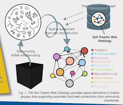 Figure 1 from soil ontologies poster.