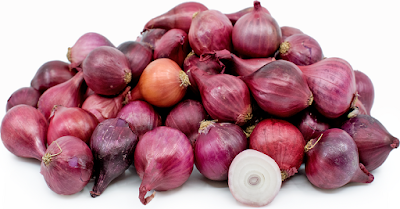 export onion from India