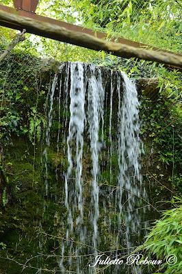 Enclos, Bioparc Doué-la-Fontaine