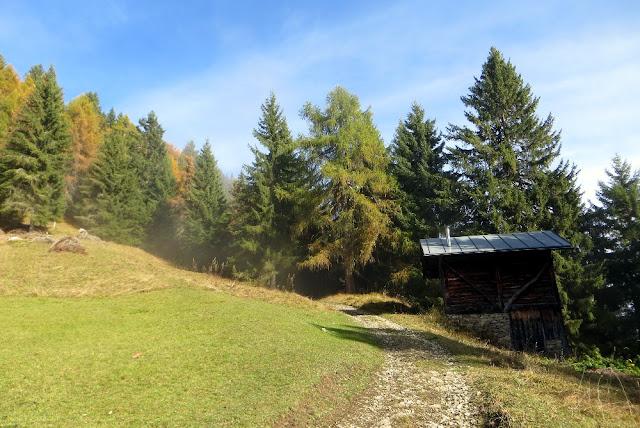 rifugio costapiana escursione valle di cadore