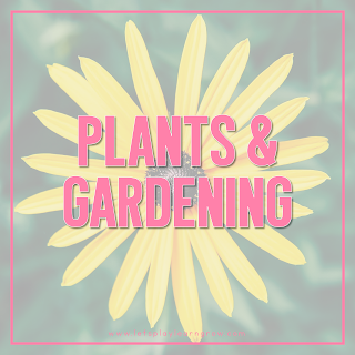 Plant-Theme
