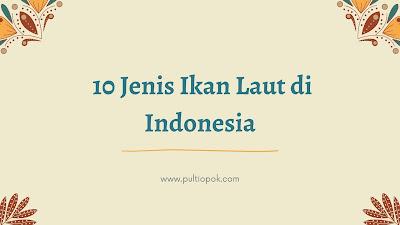 Jеnіѕ Ikаn Laut di Indonesia