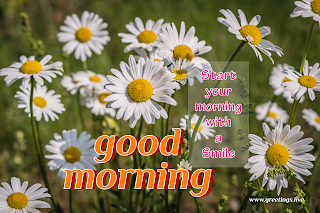 start your morning with smile! Good morning message with flowers