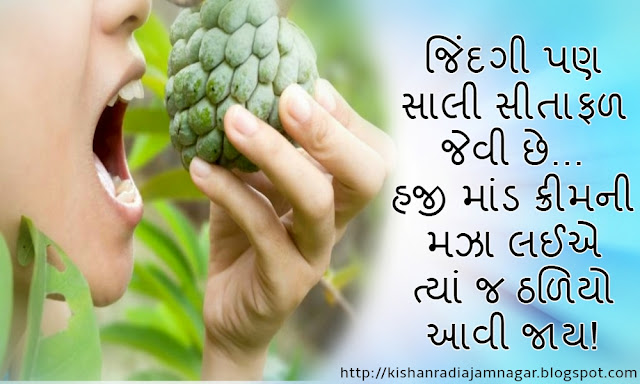 Gujarati Life Quotes|Gujarati Life Status|Gujarati Life Thoughts