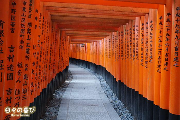allée de torii fushimi inari taisha kyoto