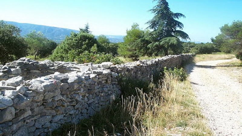 tembok pemisah atau mur de la peste untuk virus