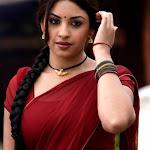 Richa Gangopadhyay In Saree Hot Photos