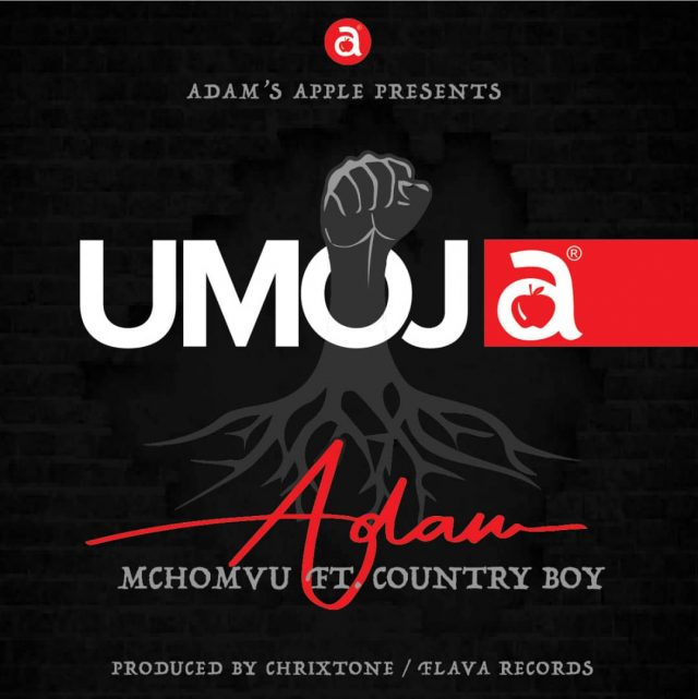 Adam mchomvu Ft Country Boy - Umoja (Audio) MP3 Download