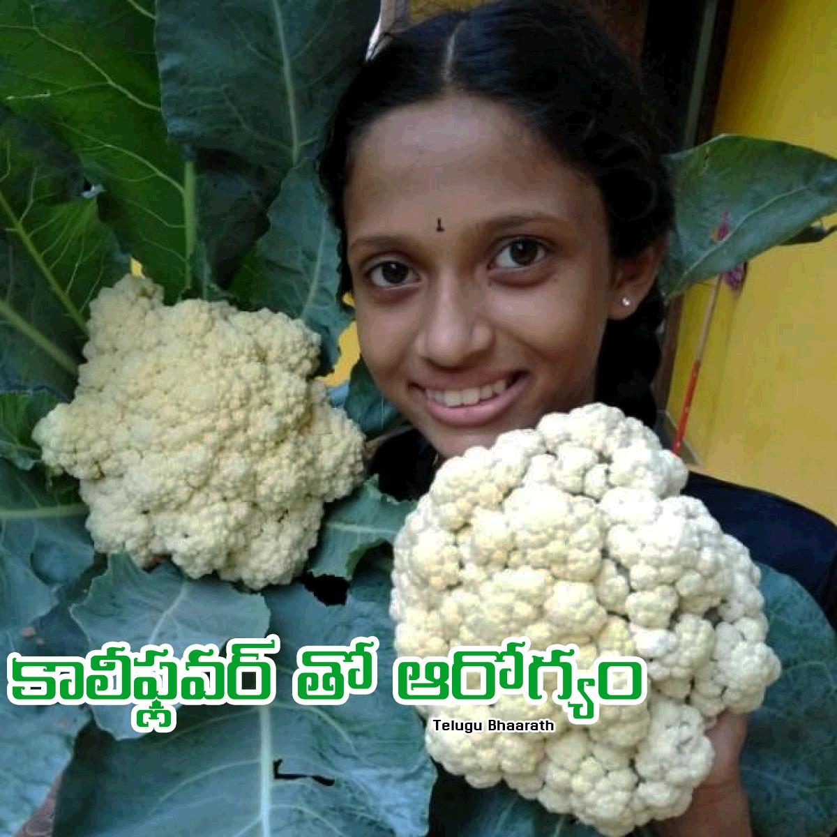 కాలీఫ్లవర్ లో దాగున్న అద్బుత ఆరోగ్య రహస్యాలు - Cauliflower lo Daagiunna Adhbutha Aarogya Rahasyaalu