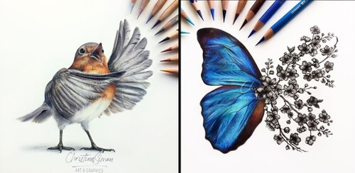 00-Animal-Drawings-Cristina-Simon-www-designstack-co