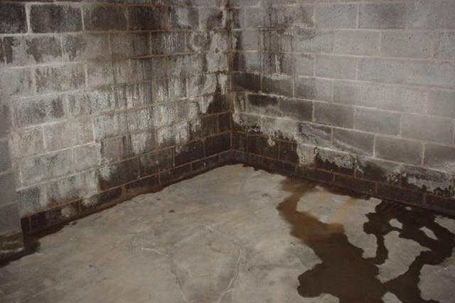 basement waterproofing in hindi