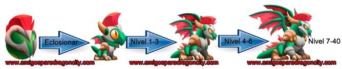 imagen del crecimiento del dragon draek