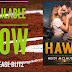 Release Blitz - Hawk by Heidi McLaughlin