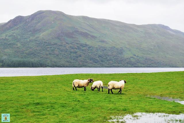 Loch Ba, isla de Mull (Escocia)