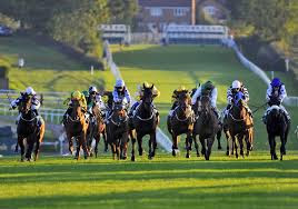 Leicester horse racing