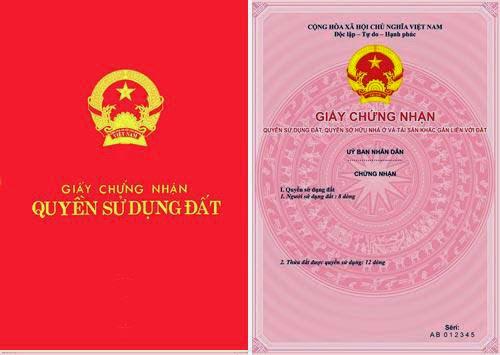 Little Việt Nam