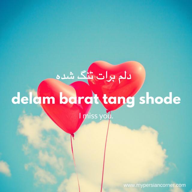 Persian | Farsi | Phrases | Vocabulary | I miss you