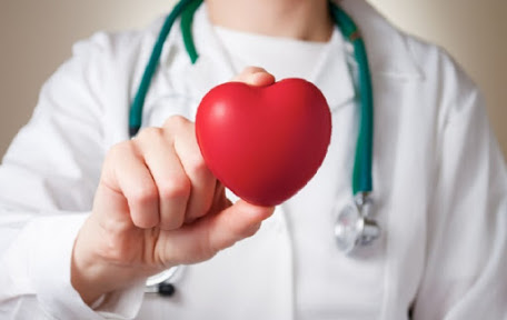 Daun nangka dapat mengobati kardiovaskular