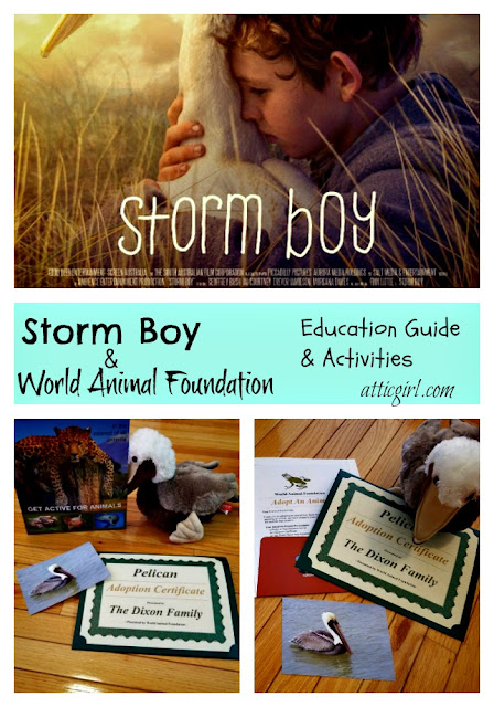 Storm Boy Activities