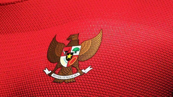 Ilustrasi Timnas Indonesia