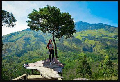 7 Tempat Wisata Di Malang Terbaik Dan Wajib Anda Kunjungi
