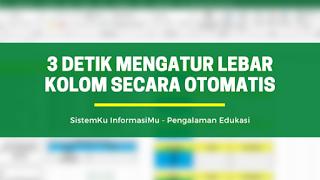 Lebar Kolom Excel Otomatis