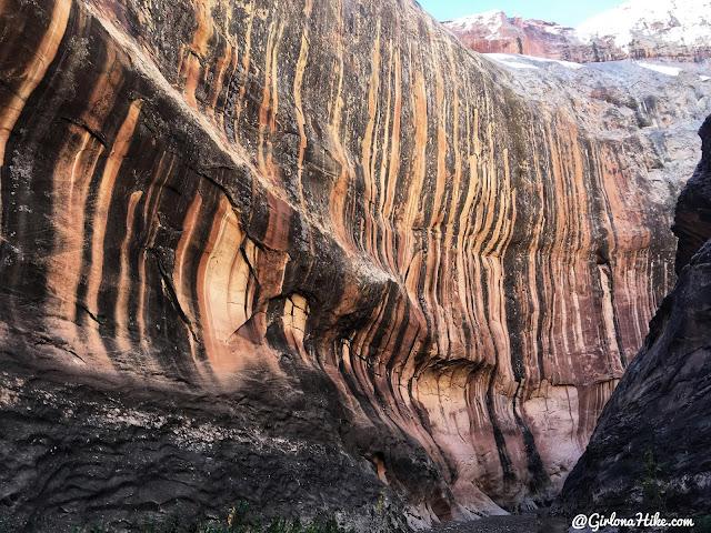 Backpacking Halls Creek Narrows, Capitol Reef National Park