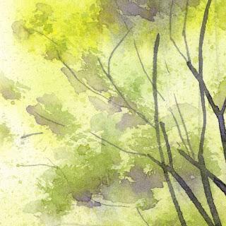 グリーンの色。濃淡のある黄緑、深緑、紫
