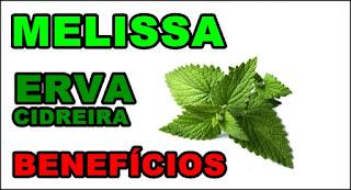 Benefícios do chá de melissa ou erva-cidreira