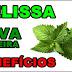 Benefícios do chá de Melissa ou Erva-Cidreira para saúde e contra-indicações
