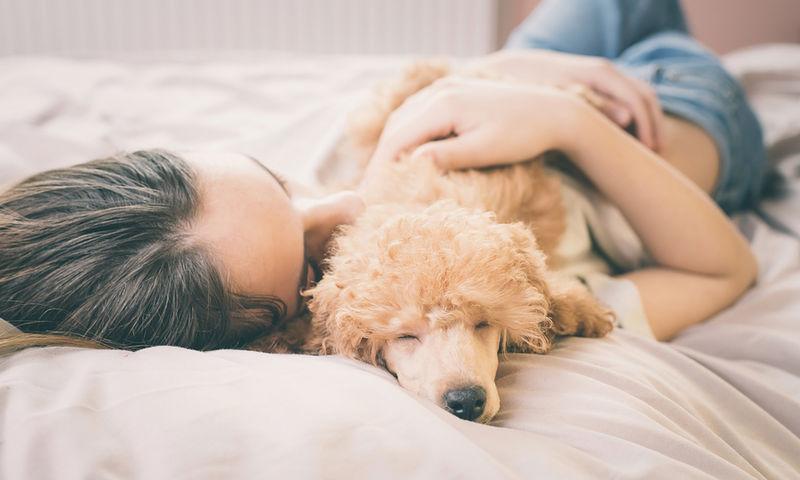 Είναι καλό να κοιμόμαστε με τον σκύλο μας;
