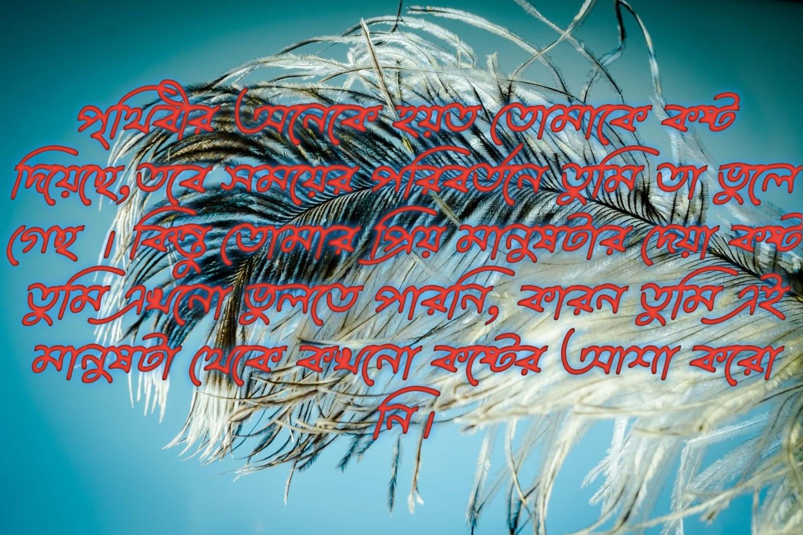 bangla Shayari hd image