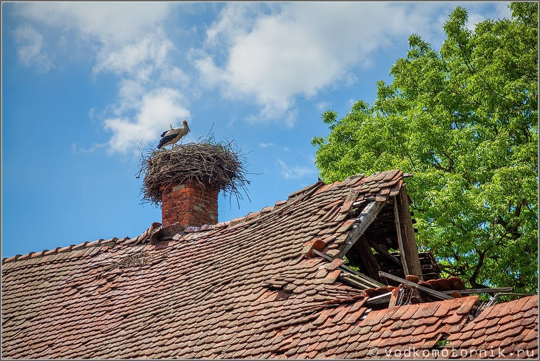 На крыше замка Норкиттен 2