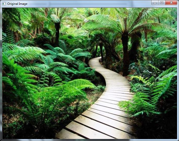 Rotate Image & Video - OpenCV Tutorial C++