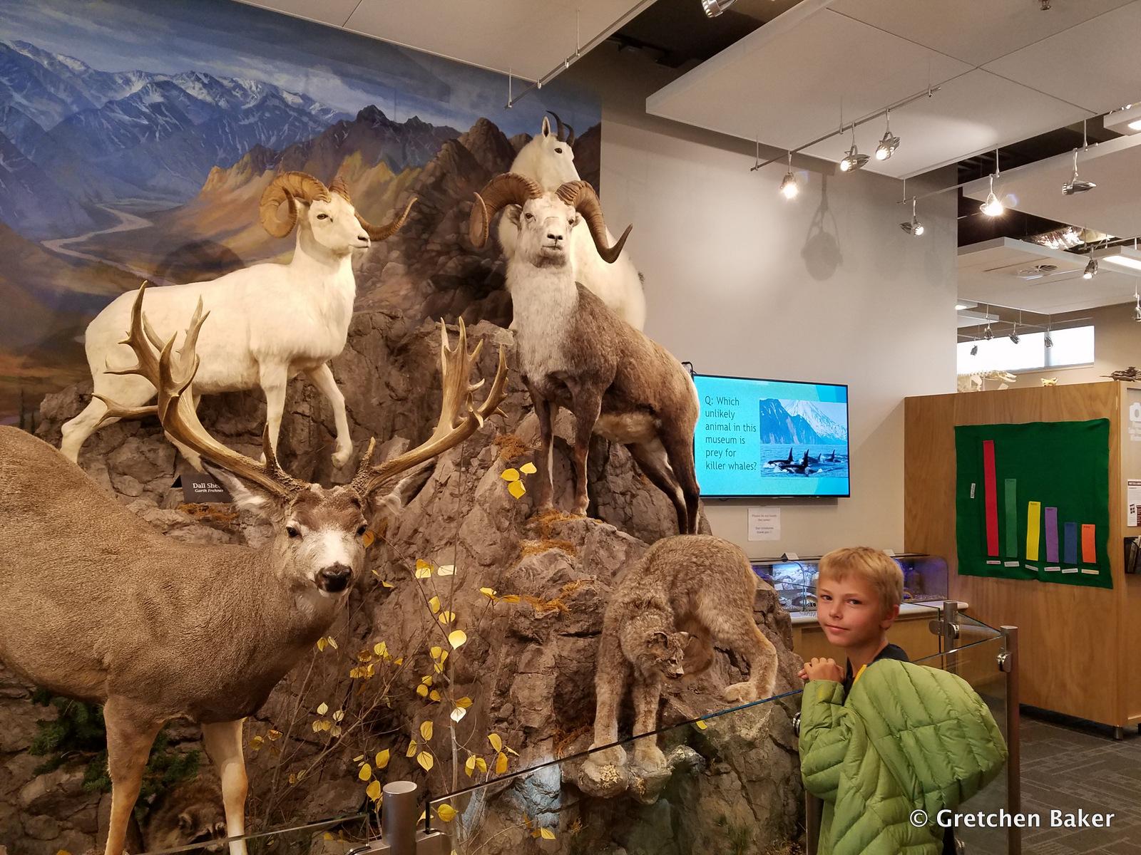 Garth Jerri Frehner Museum Of Natural History