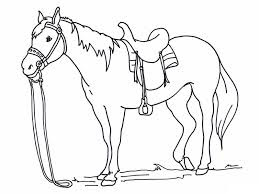 Mewarnai gambar kuda